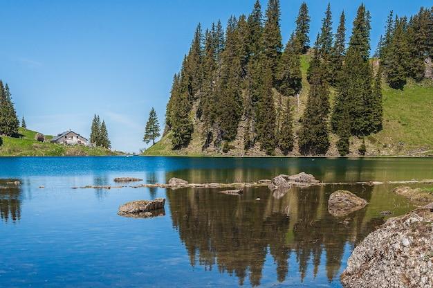 Árboles en las montañas rodeadas por el lago lac lioson en suiza
