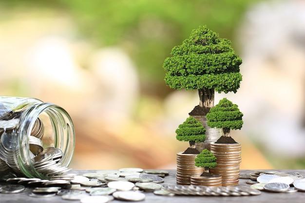 Árboles que crecen en monedas, dinero y botella de vidrio.