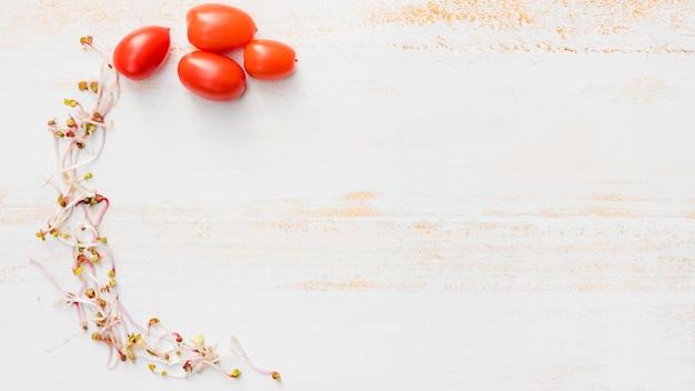 Arco de brotes y tomates cherry sobre fondo de escritorio blanco