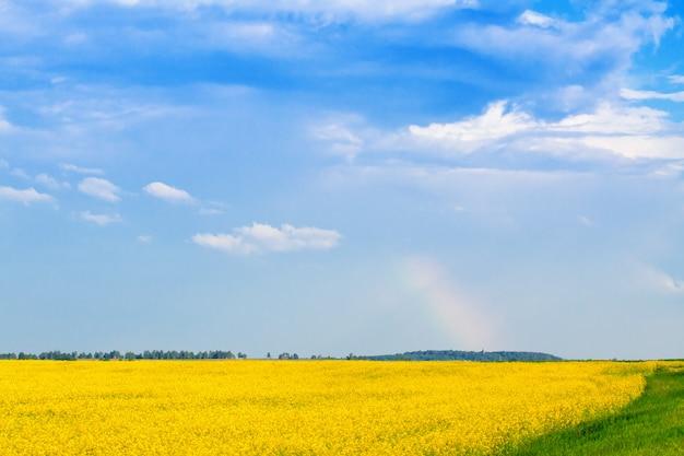 Arco iris sobre campos