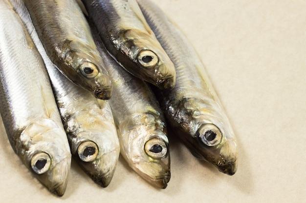 Arenque de pescado marino sobre fondo beige