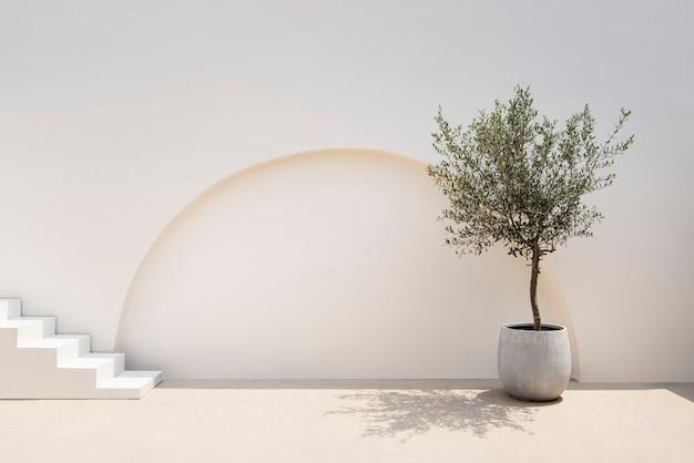 Arquitectura exterior minimalista de paredes y plantas mediterráneas.