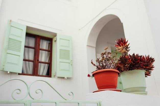 Arquitectura tradicional en el pueblo de akrotiri en la isla de santorini, grecia. casas blancas, persianas verdes. cultura griega