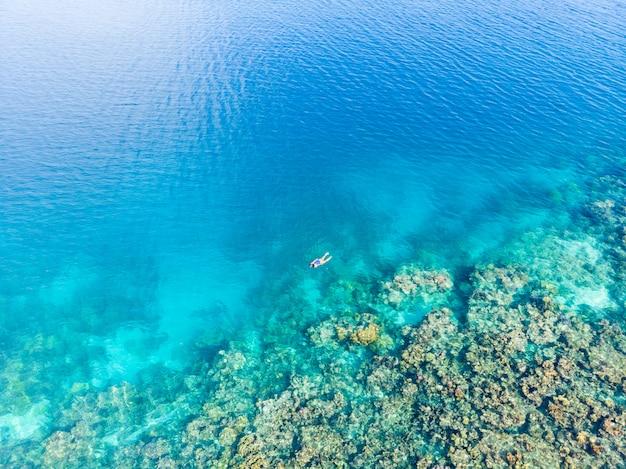 Arrecife de coral en el mar tropical