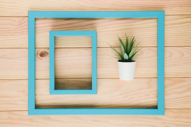 Arreglo de cuadros azules con una planta.