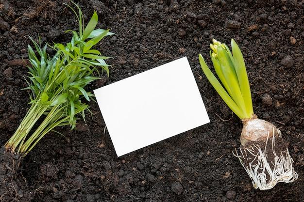 Arreglo del día mundial del medio ambiente en tierra con tarjeta vacía