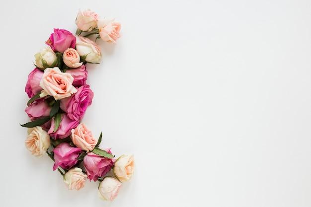 Arreglo floral en flor en la vista superior de fondo blanco