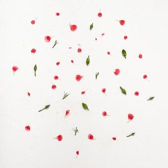 Arreglo floral plano de pétalos de colores.