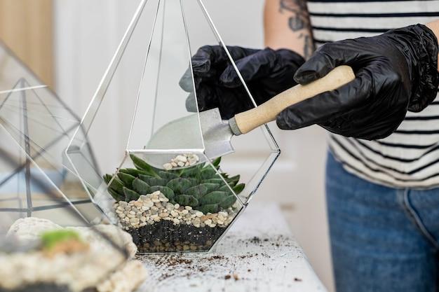 Arreglo de floristería femenina suculentas plantas naturales en florarium de vidrio sobre piedras decoración closeup