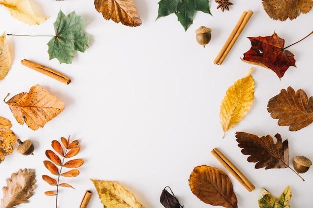 Arreglo de hojas y condimentos