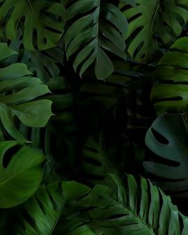 Arreglo de hojas de palma verde 3d