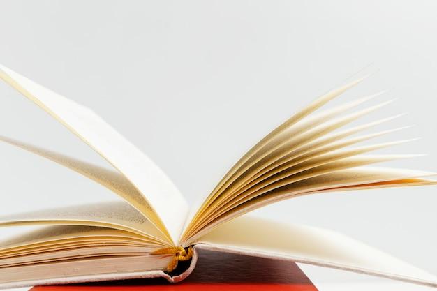 Arreglo con libro abierto y fondo blanco.