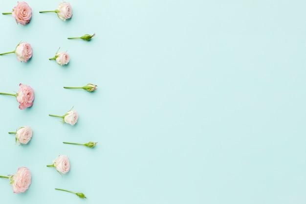 Arreglo de marco de rosas pequeñas con espacio de copia sobre fondo azul.