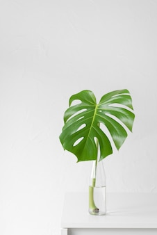 Arreglo mínimo de hojas tropicales