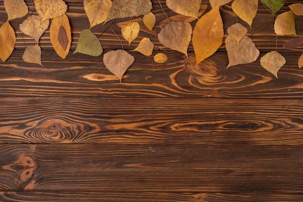 Arreglo de otoño con hojas caídas