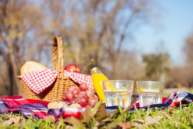 Arreglo de picnic en la temporada de otoño