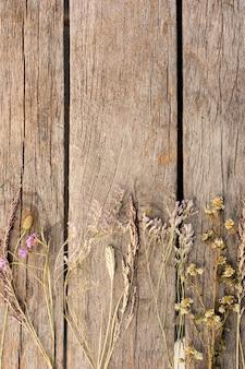Arreglo de plantas secas sobre fondo de madera con espacio de copia