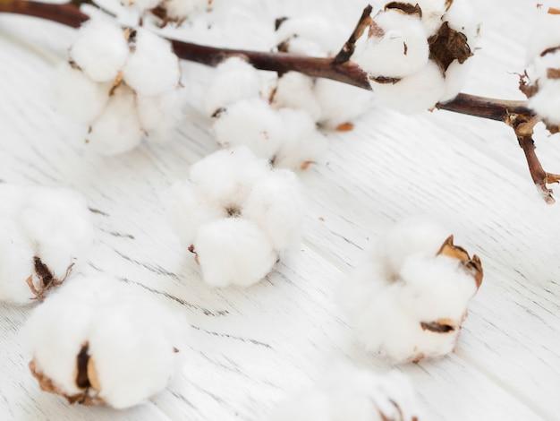 Arreglo de primer plano con flores de algodón