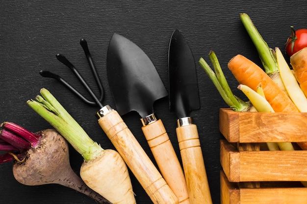 Arreglo de verduras sobre fondo oscuro