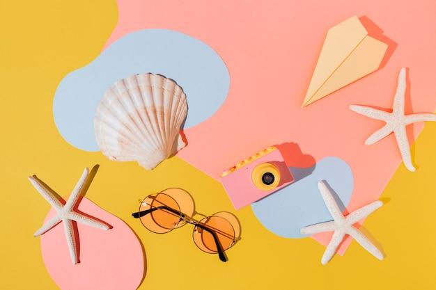Arreglo de vista superior con conchas marinas