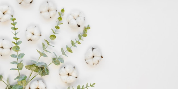 Arreglo de vista superior con flores y hojas de algodón
