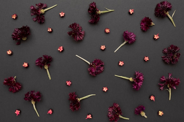 Arreglo de vista superior de flores