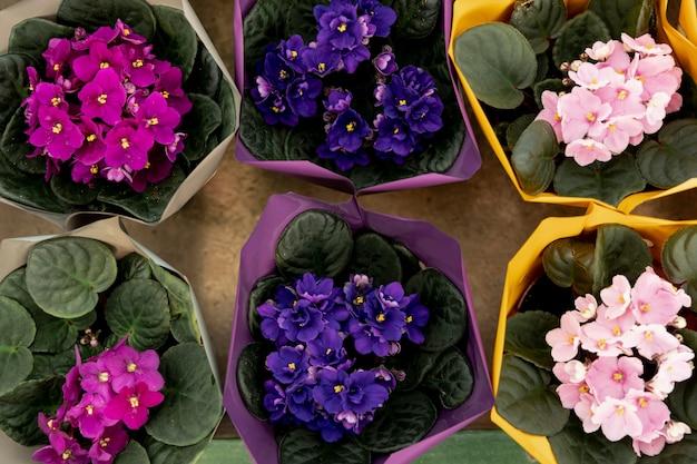 Arreglo de vista superior con hermosas flores