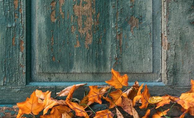 Arreglo de vista superior con hojas sobre fondo rayado