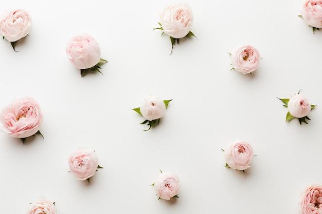 Arreglo de vista superior de rosas rosadas