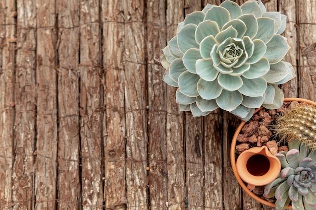 Arriba ver flores sobre fondo de madera