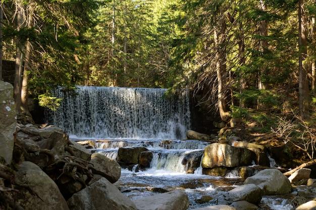 Arroyo de montaña rocosa y árboles de goma