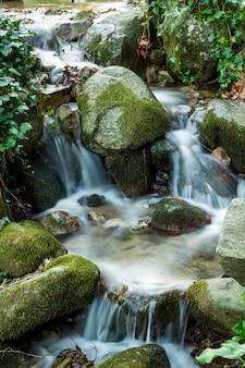 Arroyo que fluye fresco