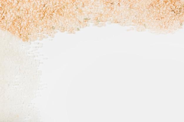 Arroz crudo sobre fondo blanco