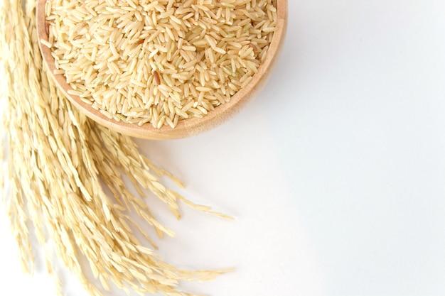 Arroz moreno en la placa de madera y la planta de arroz con espacio de copia sobre fondo blanco