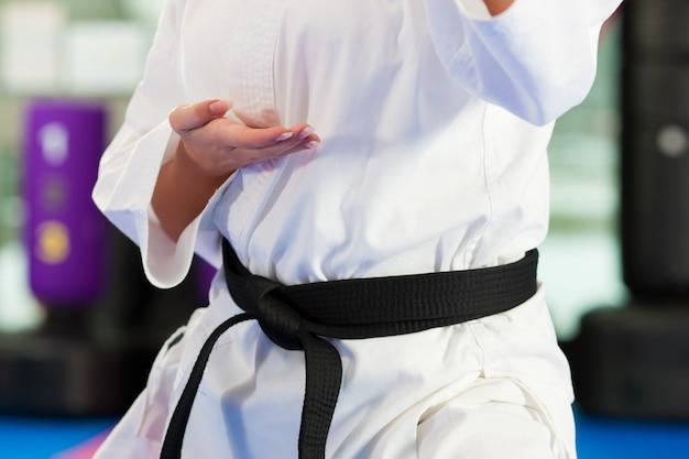 Artes marciales entrenamiento deportivo en gimnasio.