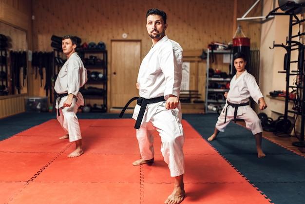 Artes marciales, entrenamiento de lucha en acción