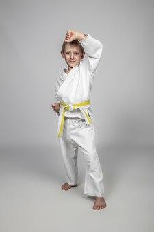 Artes marciales infantiles en edad uke plantean