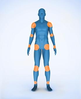 Articulaciones de un cuerpo digital