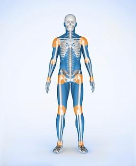 Articulaciones de un esqueleto digital azul