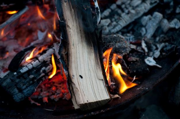 Ascuas calientes de una fogata en el lago de los bosques, ontario