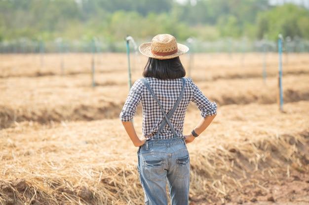 Asia joven agricultora con sombrero de pie y caminar en la mujer de campo para inspeccionar en el jardín agrícola. crecimiento de la planta. concepto de ecología, transporte, aire limpio, alimentos, bioproductos.