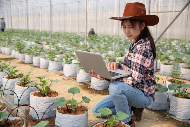 Asistente de ciencias de la mujer, oficial de agricultura. en la investigación de la granja de invernadero melón