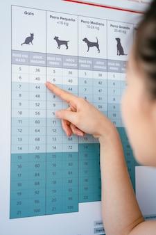 Asistente veterinario asiático que verifica los valores saludables de una estatura y peso promedio de animales.