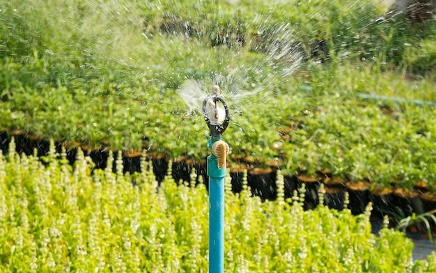 Aspersor sistema de riego de cerca. sistema de irrigación de rociadura de agua que es utilizado en jardín de flores.