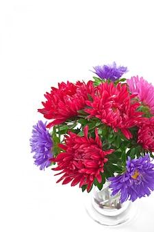 Aster flores en un florero de vidrio