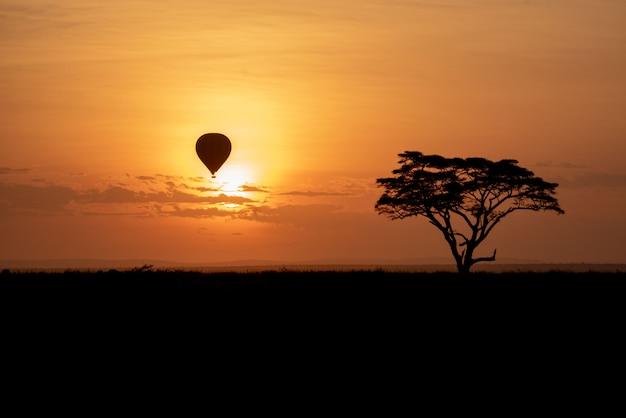 Atardecer en serengeti