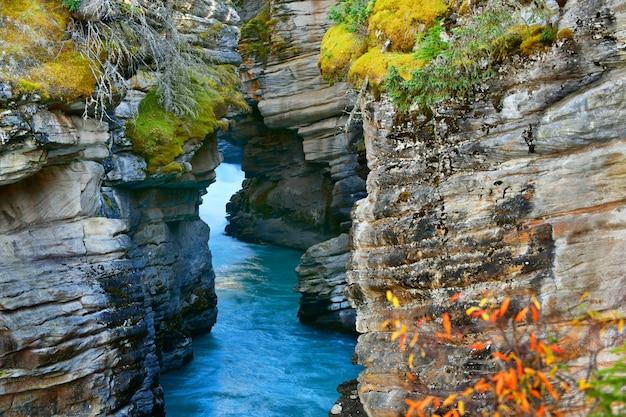 Athabasca falls canyon en otoño, parque nacional jasper, alberta, canadá