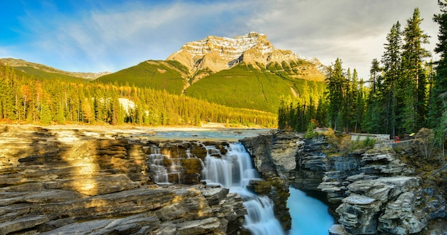 Athabasca falls en otoño, parque nacional jasper, alberta, canadá