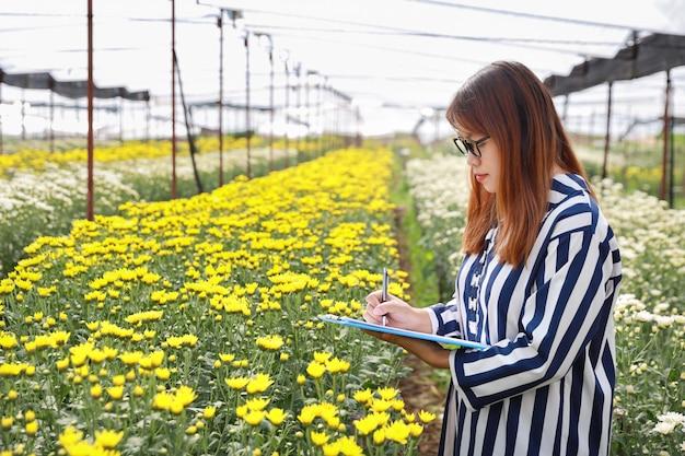 Atractiva mujer asiática tomando nota de la granja agrícola de flores de crisantemo