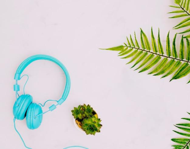 Auriculares y plantas en superficie luminosa.